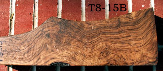 T8-15B